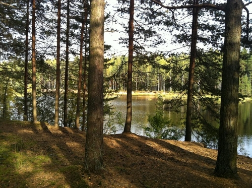 бурение скважин на воду во Всеволожском районе Ленинградской области