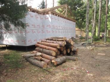 деревья про запас