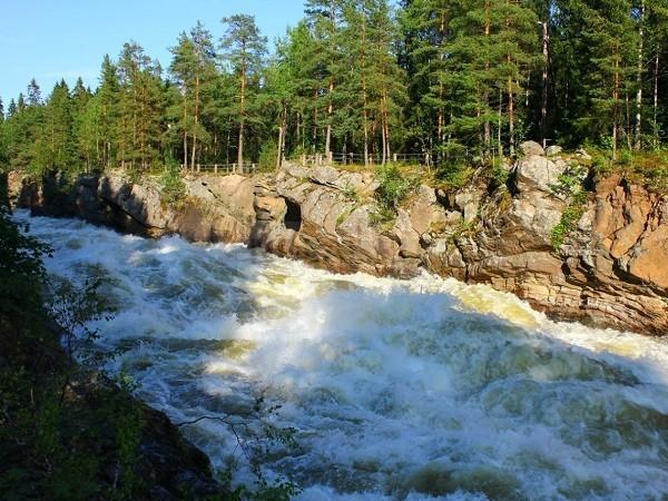 природа Приозерского района