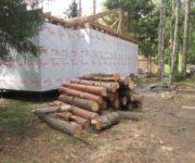 деревья-про-запас